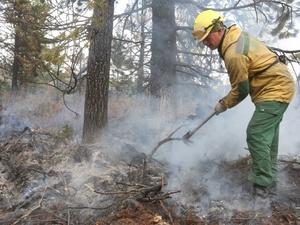 Нижегородские синоптики прочат пожары лесов и торфяников на предстоящий уик-энд
