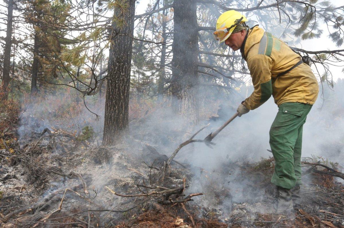 Нижегородские синоптики прочат пожары лесов и торфяников на предстоящий уик-энд - фото 1