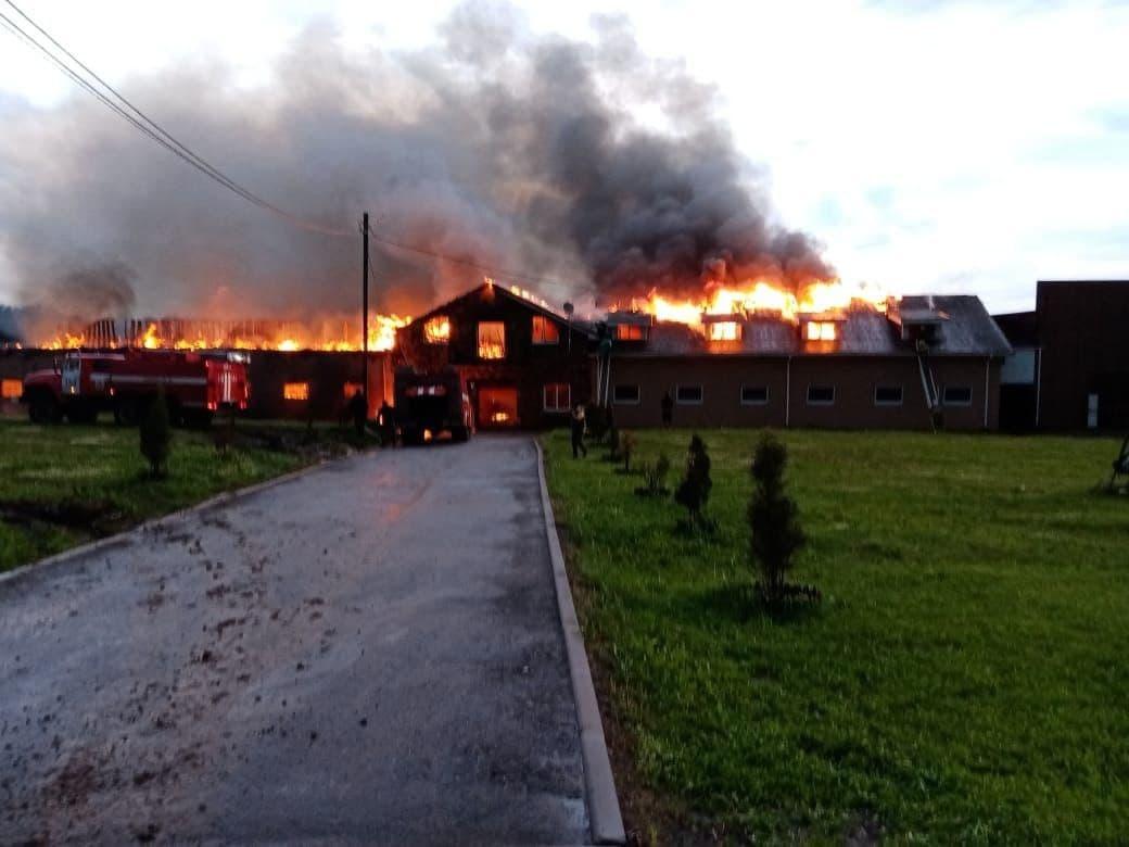Конюшни загорелись в Дальнеконстантиновском районе   - фото 1