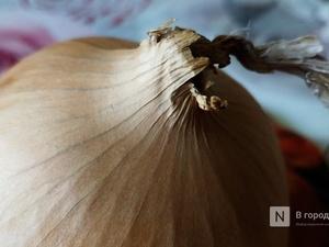 Репчатый лук подорожал в нижегородских магазинах на 18%