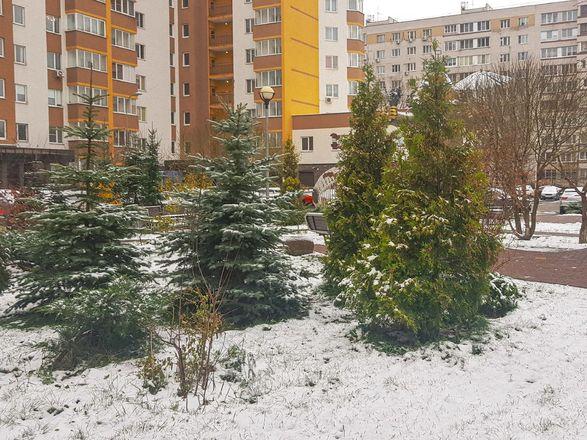 Фотографиями первого снега поделились жители Нижнего Новгорода - фото 4