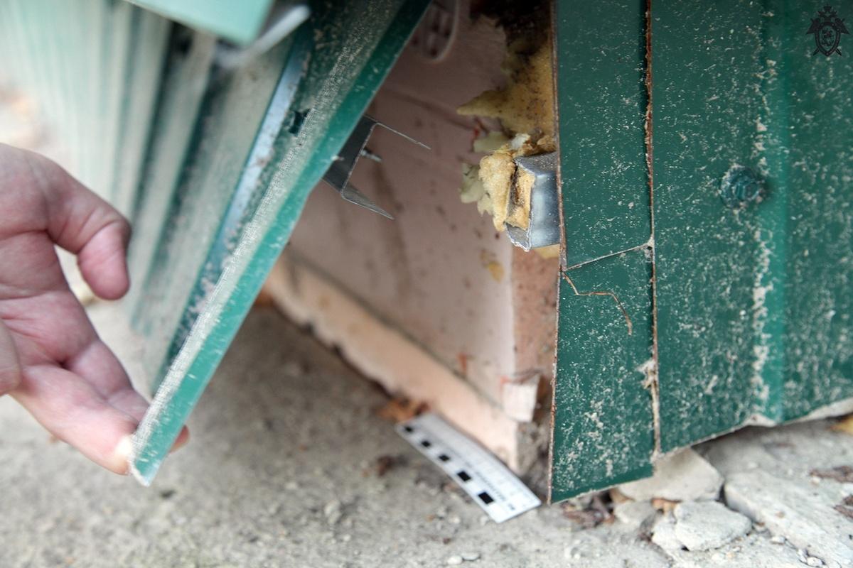 Руководства Воротынца подозревают в передаче небезопасных квартир детям-сиротам - фото 2