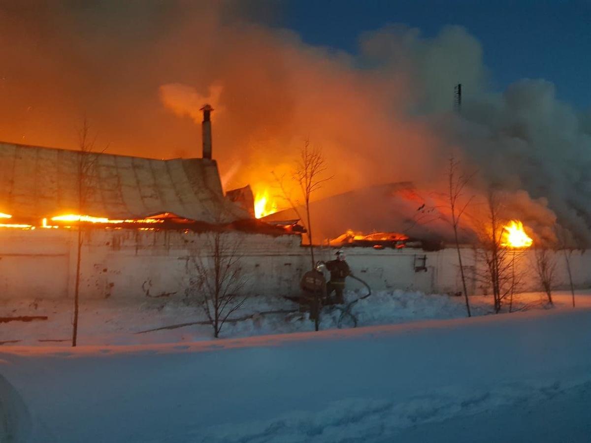 Конюшня загорелась в Богородском районе - фото 1
