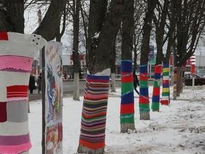 Деревья в парке «Швейцария» обзаведутся теплыми шарфами