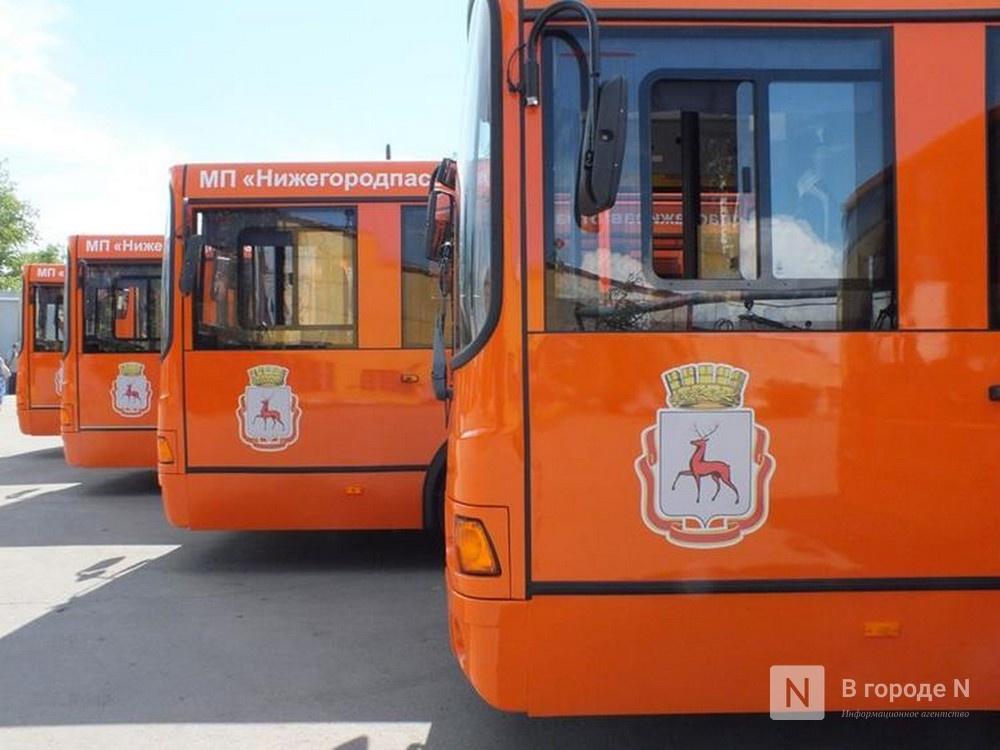 Количество автобусов на нижегородских дорогах в часы пик увеличится - фото 1