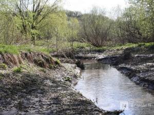 Попечительские советы могут появиться у нижегородских рек
