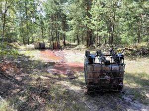 Химические отходы разлили в лесу Дзержинска