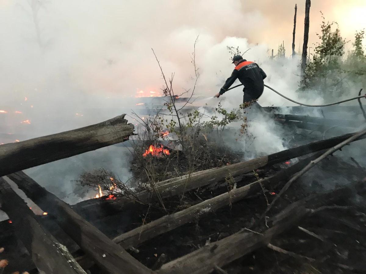 50 нижегородских пожарных помогают тушить заповедник в Мордовии - фото 1