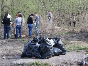 Нижегородцы очистят от мусора Почаинский овраг