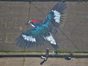 Расправь крылья: проект студентов Вышки стал частью нижегородского стрит-арта