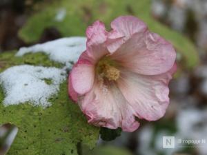 Похолодание до -9°С придет в Нижний Новгород