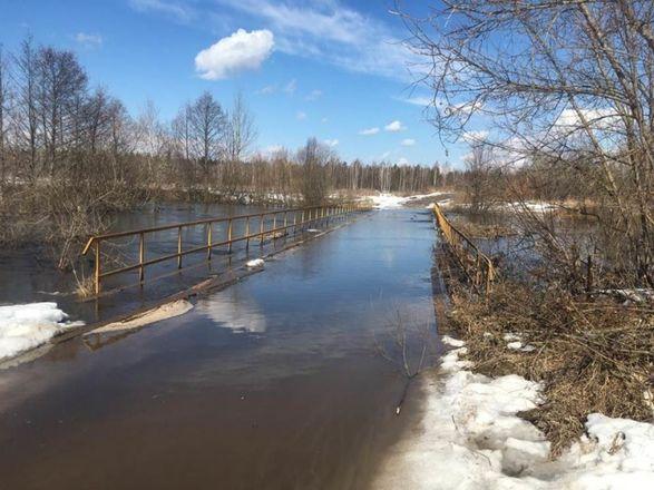 Еще два моста подтопило в Нижегородской области - фото 2