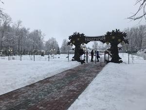 Новый дендрарий открылся в Выксе