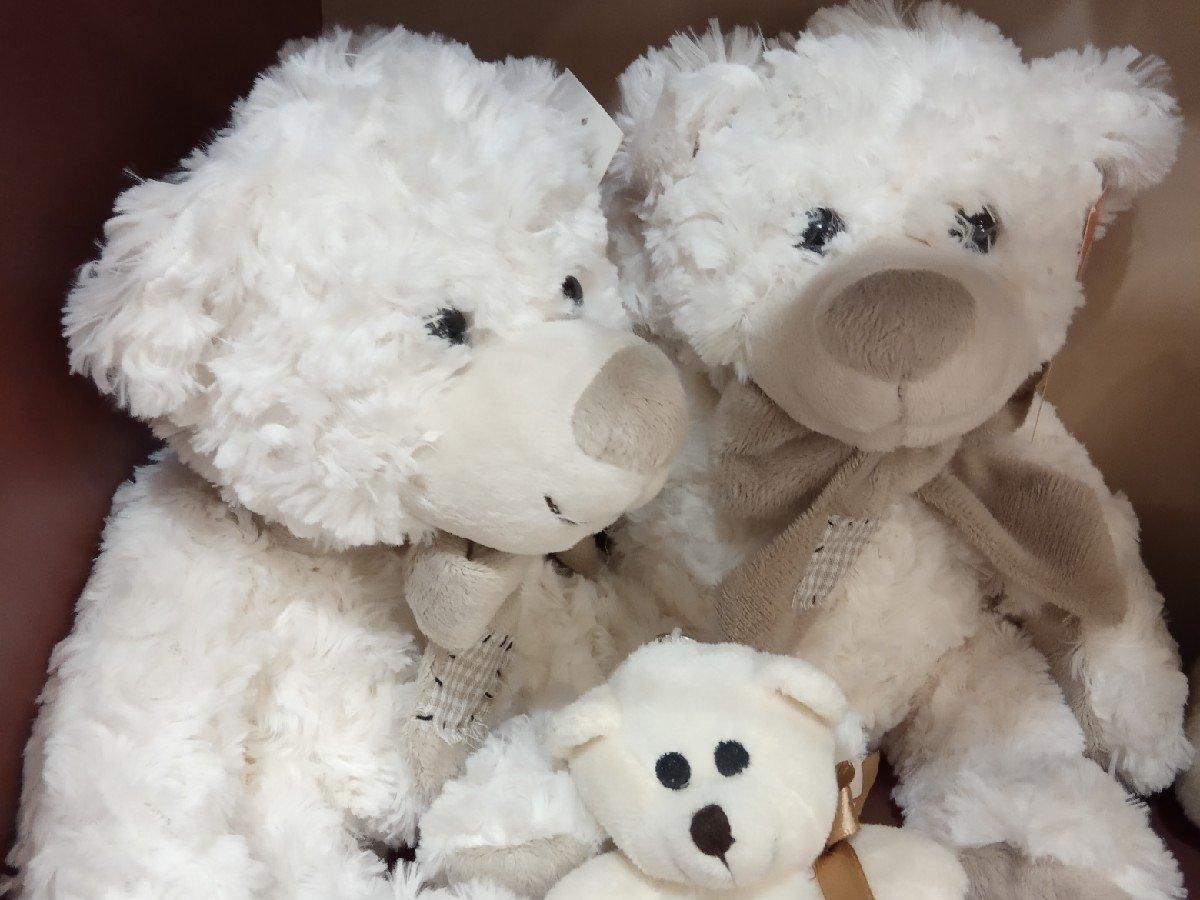 Нижегородка собирала медведей «Тедди» 20 лет, а теперь показывает их всем желающим - фото 1