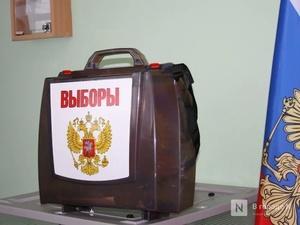 На избирательных участках нижегородцы выберут территории для благоустройства