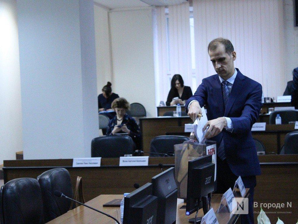 Председатель Гордумы пояснил, почему голосование по оценке нижегородских нацпроектов было тайным - фото 1
