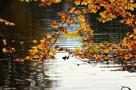 Солнечные выходные с кратковременными дождями ожидают нижегородцев