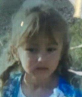 Уголовное дело по факту исчезновения 5-летней девочки возбудили нижегородские следователи   - фото 1