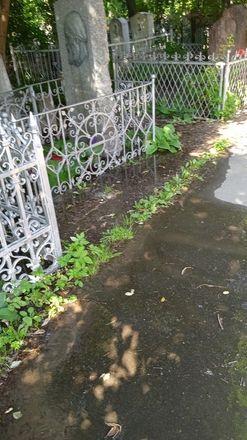 На Бугровском кладбище разрушается забор и подтапливаются могилы - фото 2