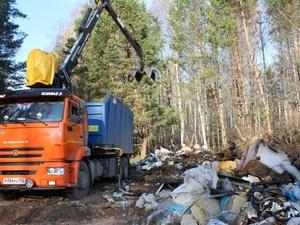 Крупную свалку объемом 280 кубометров ликвидировали на Бору